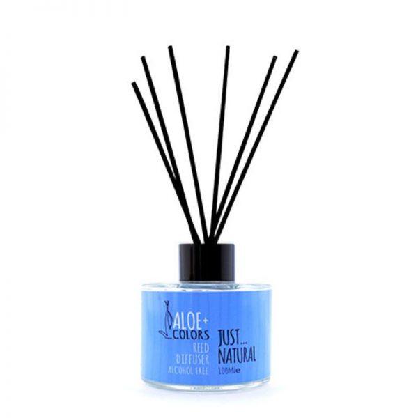 Reed Diffuser Just Natural - Aloe+Colors