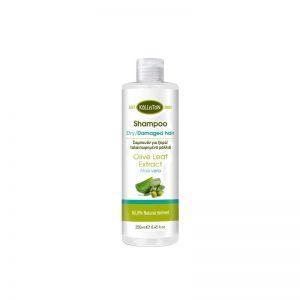 Shampoo Dry/Damaged Hair - Kalliston