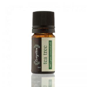 Pure Essential Oil Tea Tree - Evergetikon